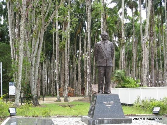 Palmentiun in paramaribo suriname