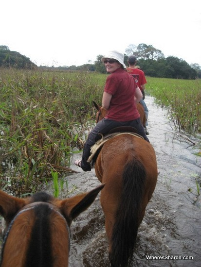 horse riding in the pantanal wetlands tour bazil
