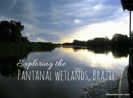 An amazing Pantanal wetlands tour