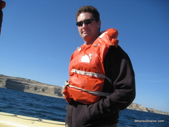 looking for Southern Right Whale in puerto madryn