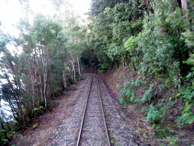 Views from the West Coast Wilderness Railway