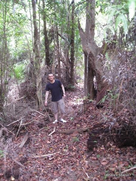 jungle trekking on Gaya Island