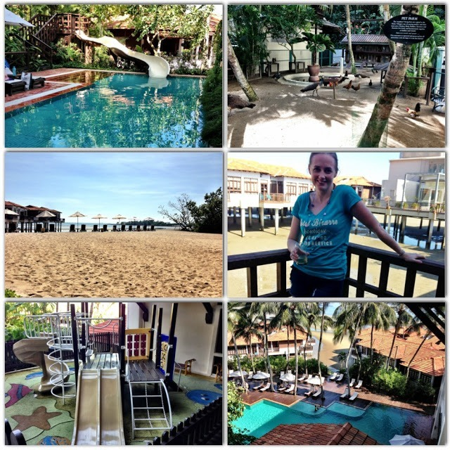 DIfferent images of Avillion Port Dickson malaysian resort. pool, animals, beach, drinks, water slide