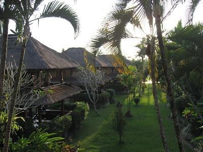lovely ubud hotel bungalows with rice paddies