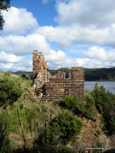 things to do in western tasmania gordon river