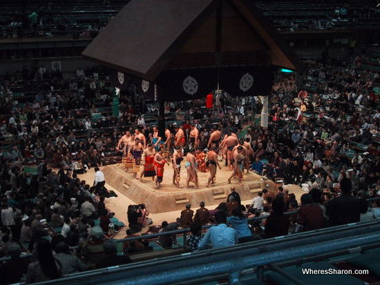 I would love to go to the sumo