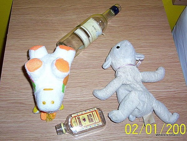 Fleecie and the cow get drunk in edinburgh hogmanay
