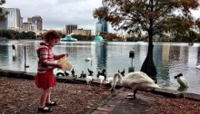 Kid feeding birds and ducks at Lake Eola Orlando