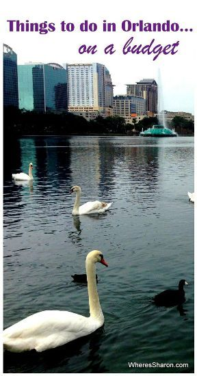 things to do in orlando on a budget