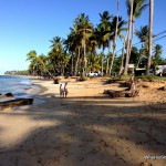 Should I visit Cabarete or Las Terrenas in the Dominican Republic?