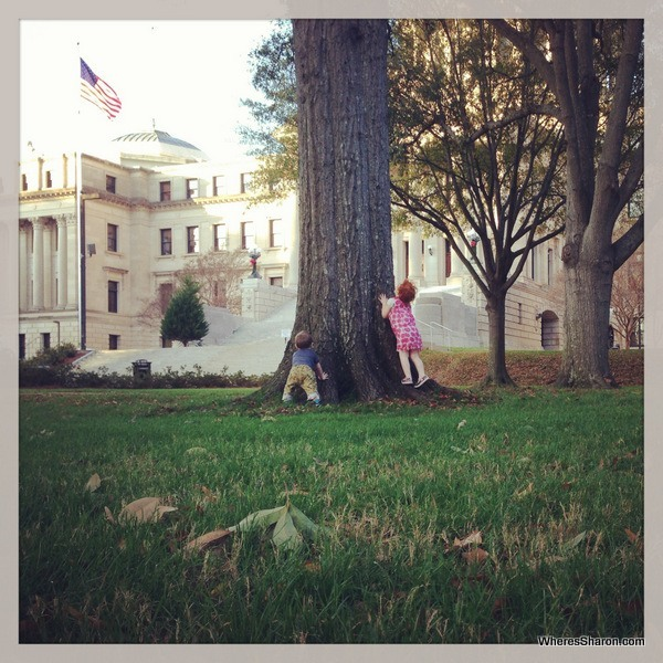 Mississippi State Capitol squirrel chasing