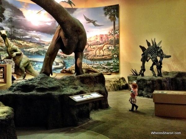 dinosuars at Fernbank Natural History Museum atlanta GA