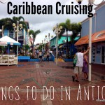 Caribbean cruise: Things to do in Antigua in a day