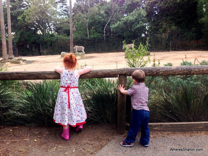Things to do in Melbourne with kids