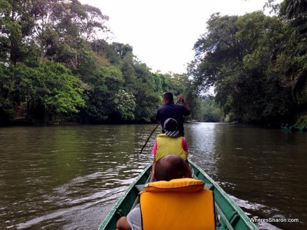 longboat on river in brunei rainforest