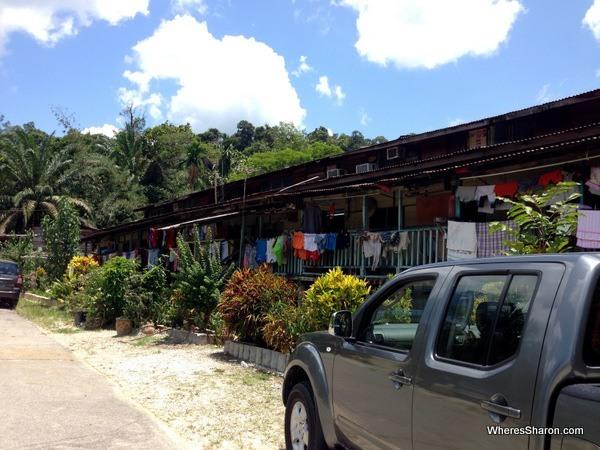 Longhouse in Brunei rainforest