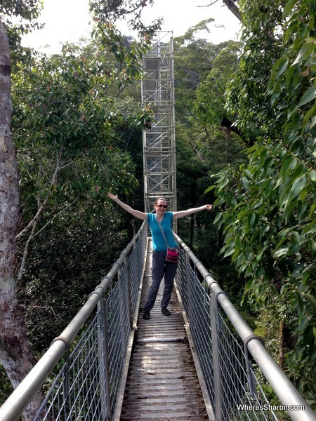 Walking along the rainforest canopy walkway at ulu temburong national park
