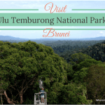 Borneo's fabulous Ulu Temburong National Park