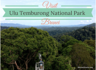 Borneo's fabulous Ulu Temburong National Park