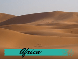 Africa Travel Blog