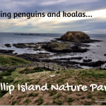 Visiting penguins and koalas at Phillip Island Nature Parks