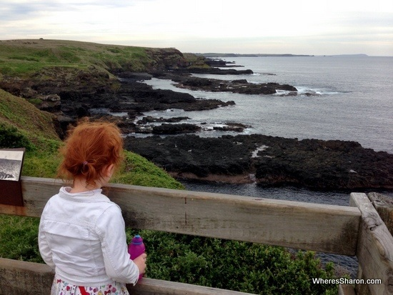 views at Nobbies Centre at phillip island nature parks