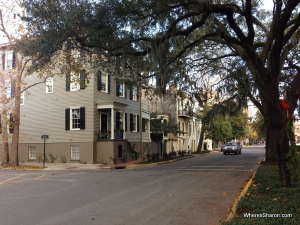 One of many pretty streets we walked along in Savannah stopover