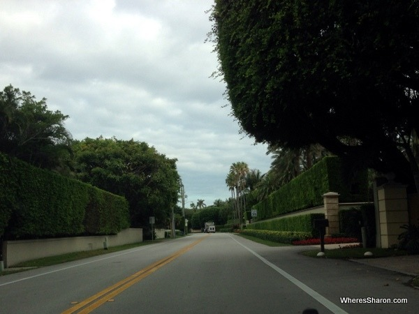 Driving around palm beach