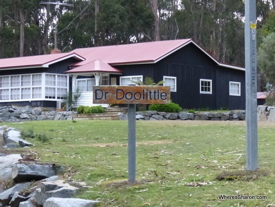 House in Doo Town things to do in tasman peninsula