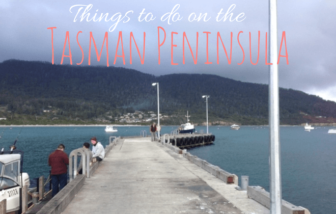 things to do on the tasman peninsula