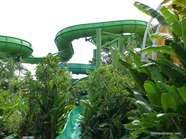 waterbom bali water slides