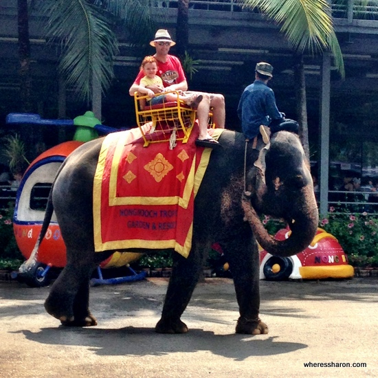 things to do in pattaya for families