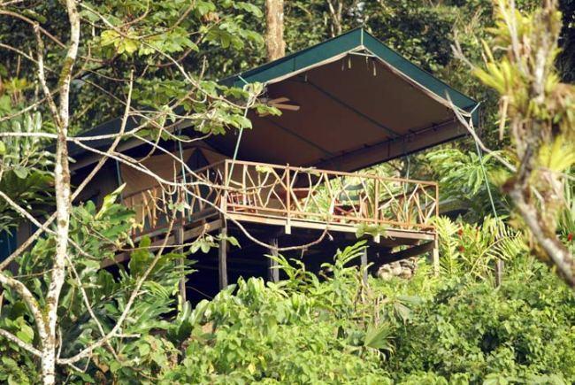 rafiki safari camp
