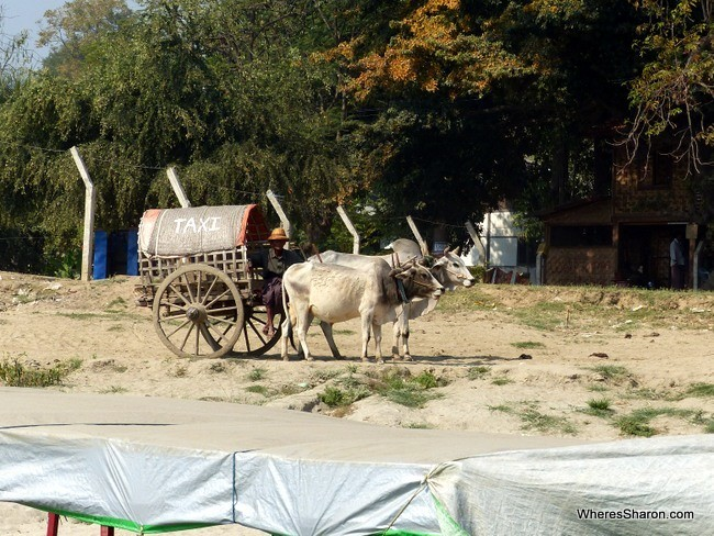 mandalay horse and cart