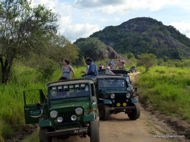 elephants and tourists at Minneriya National Park