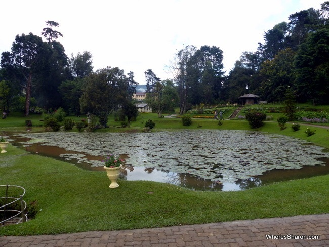 things to do in nuwara eliya Victoria Park