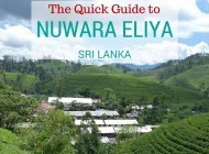 Quick Guide to Places to Visit in Nuwara Eliya