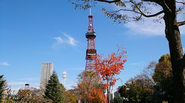 One of Sapporo's key landmarks (and attractions), the Sapporo TV Tower