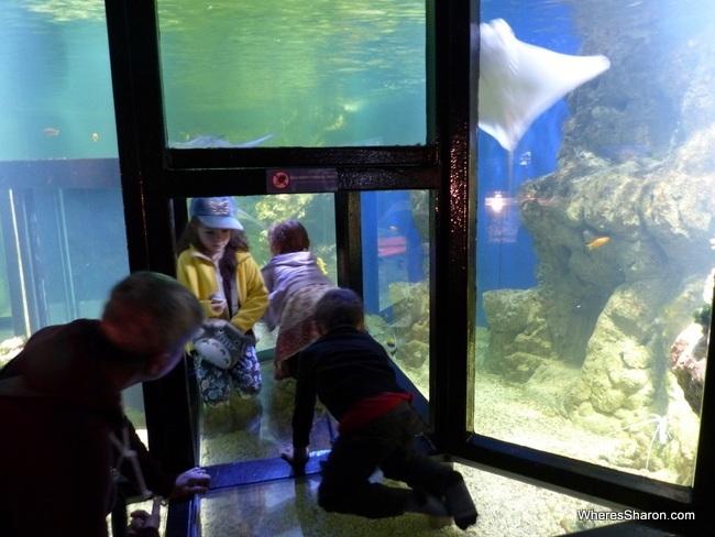 Aquaria Water Museum STockholm