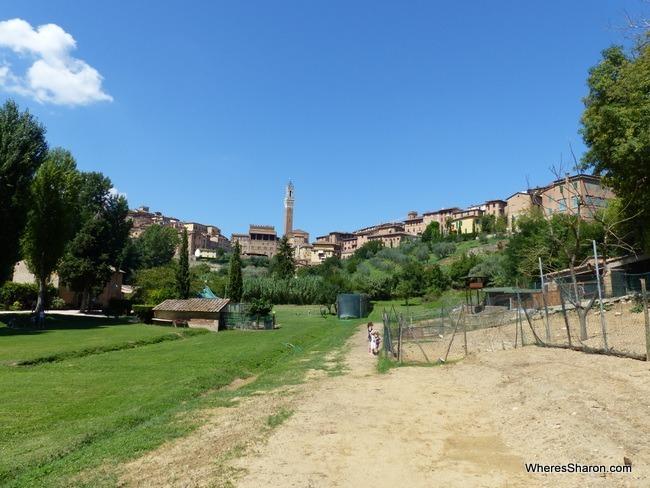 Orto de' Pecci in Siena things to do
