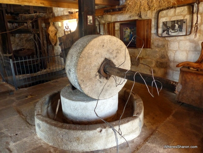 things to do in brac visit olive oil museum