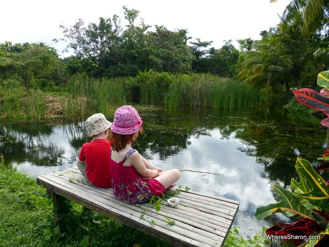 bohol with kids fishing in Loboc