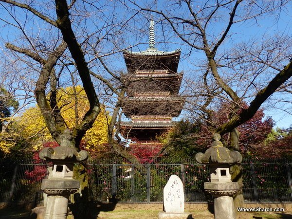 The five story Pagoda in Ueno park. It is actually surrounded by the zoo so you can't go right up to it, sadly.