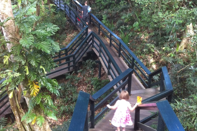 Kula Eco Park – The boardwalk is an easy and shady wander through the forest