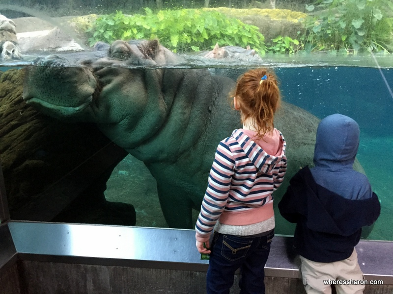 san diego things to do with family