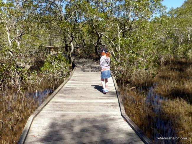 North Coast Regional Botanic Gardens Mangrove Boardwalk