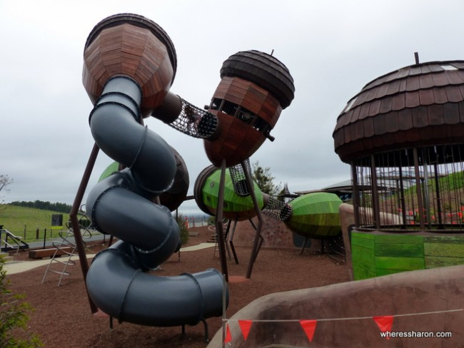 tourist attractions near canberra at Pods Playground