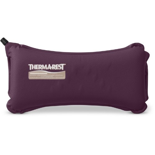 Travel Essentials 2018 Best Travel Pillow Reviews Family Travel