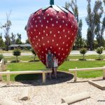 Things to do in Cobram and the RACV Cobram Resort
