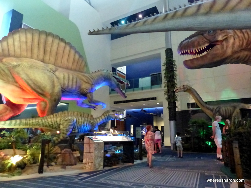 places to visit near townsville at Museum of Tropical Queensland
